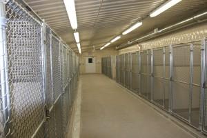 Kennel Interior 6