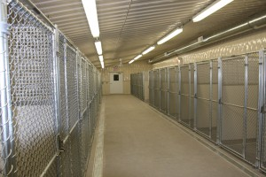 Kennel Interior 6